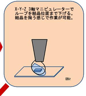 X-Y-Z 3軸マニピュレーターでループを結晶位置まで下げる。