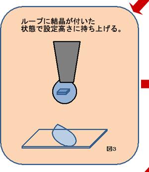 ループに結晶が着いた状態で設定高さに持ち上げる